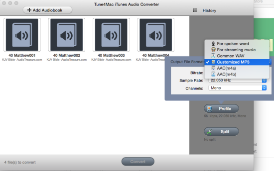 Choose MP3 format for AA Files