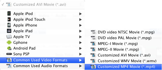 MP4 format in Profile